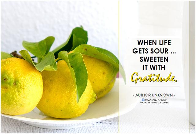 lemon gratitude