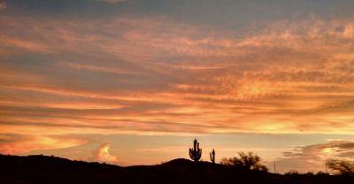 Phoenix Sunset with Saguaro in backdrop by Amita Jyoti